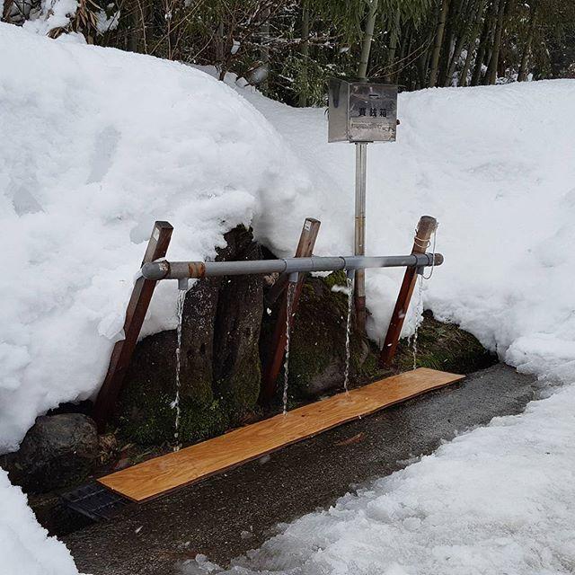馬場清水#冬の汲み場