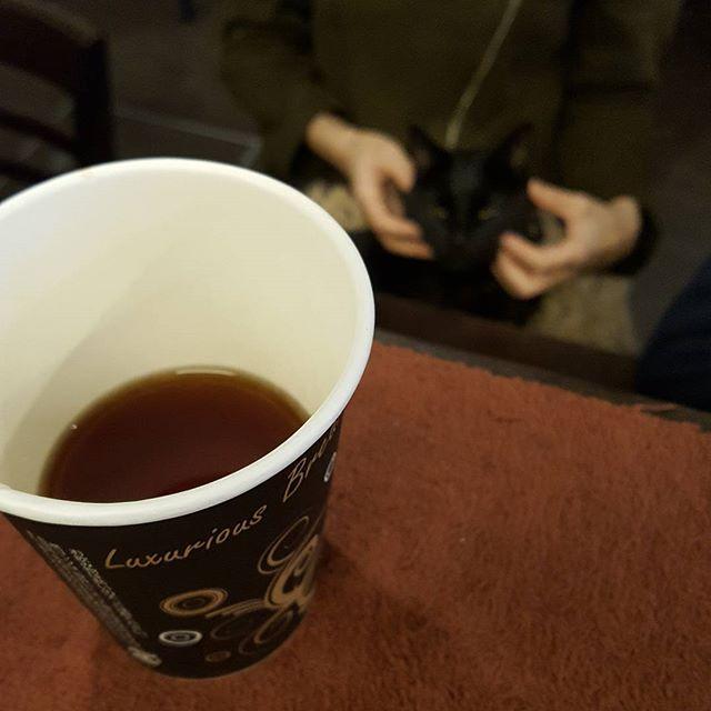 まだ水出ないけど今日もやってるぜ!#ティーポット使わず紅茶も出せる
