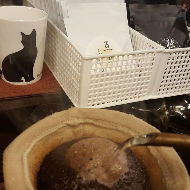 珈琲と猫と互尊独尊ドリップバッグたくさん作ったよ#今日はやさぐれFriday適用日