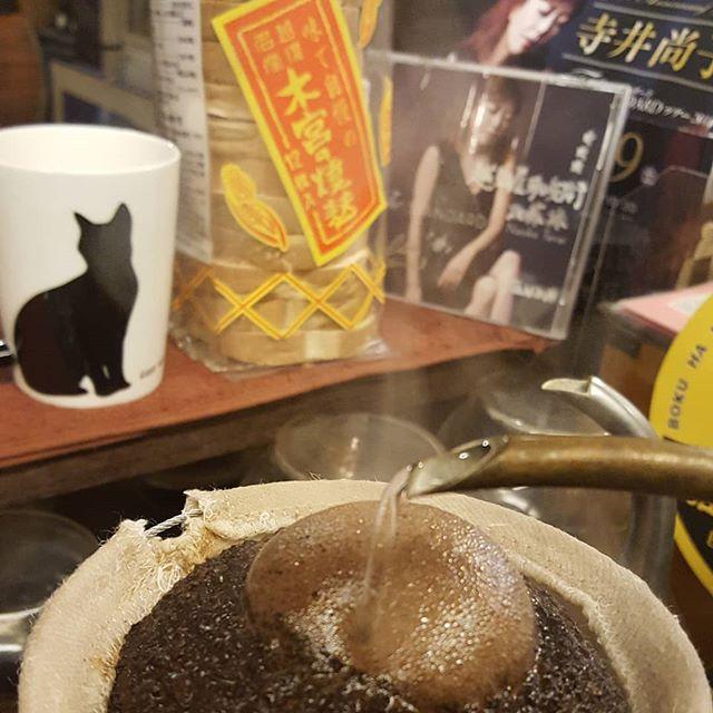 珈琲と猫と木宮と寺井尚子(笑)