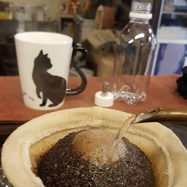 #珈琲と猫と煙草と ちっこい炭酸ペット入手!Ψ(`▽´)Ψ